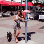 Cargou, la solución argentina para cargar el celular en la calle con energía solar