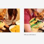 Google Fotos corregirá el color de forma automática
