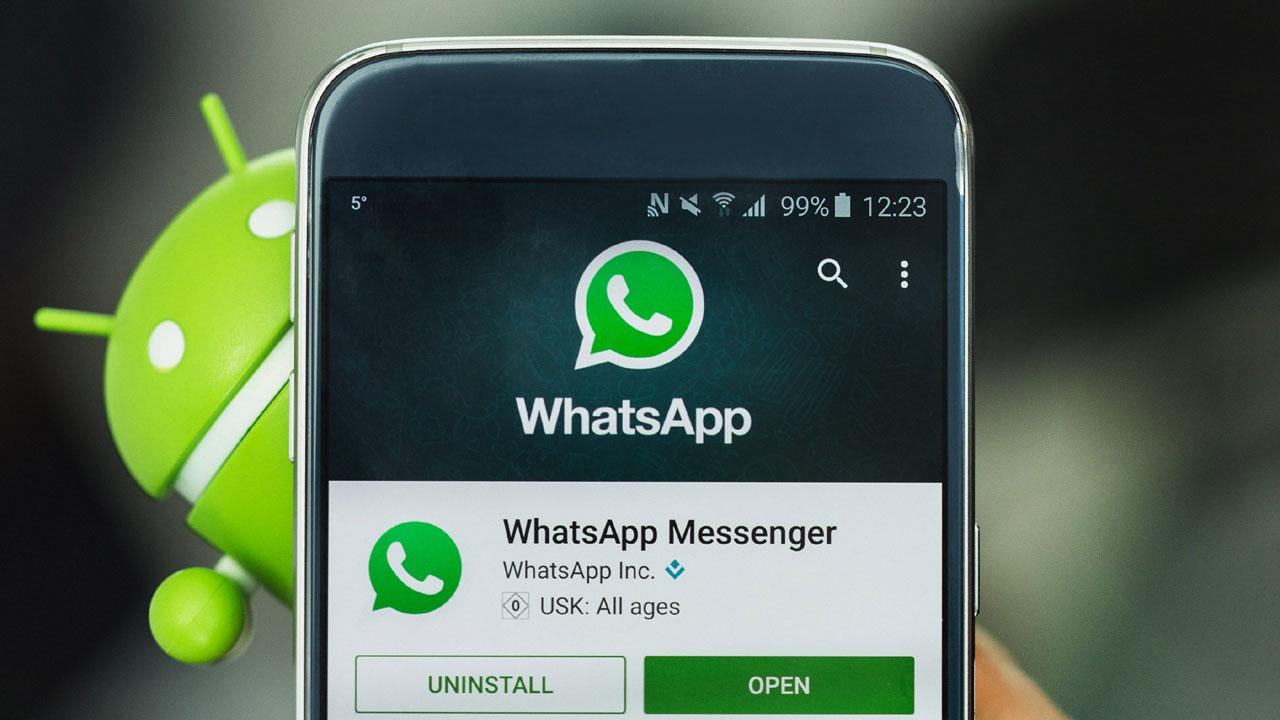 WhatsApp borrado