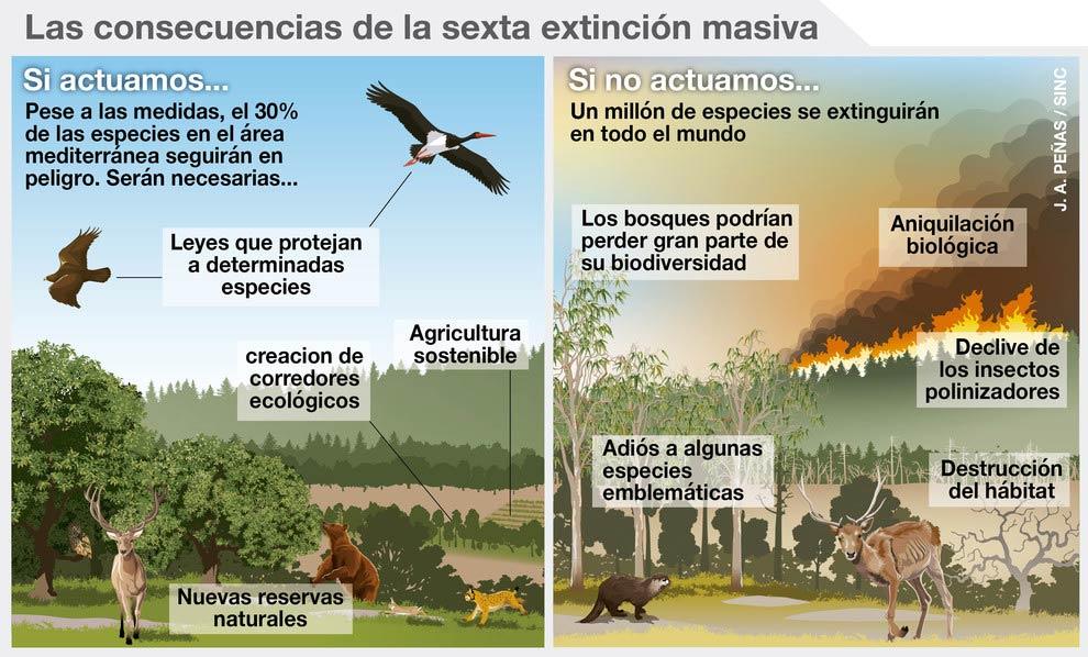Especies Impacto cambio climático