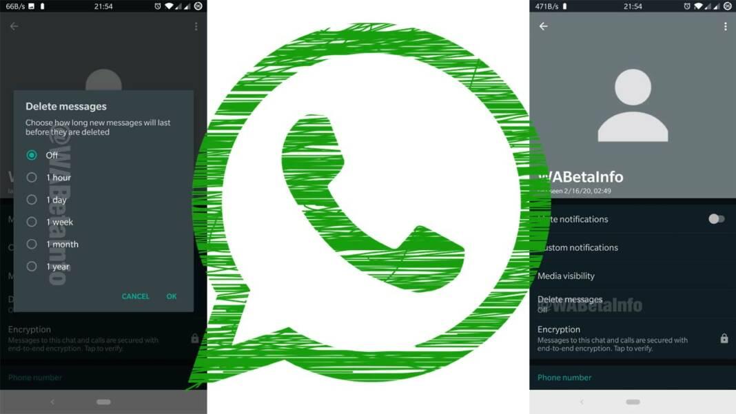 Borrado automatico mensajes WhatsApp