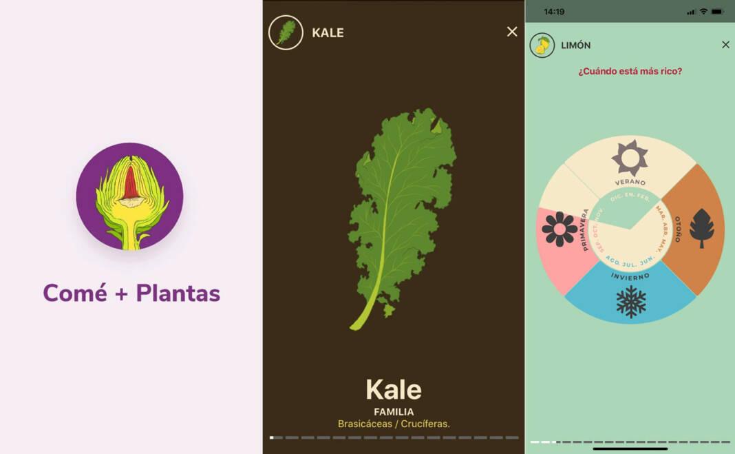 Comé+Plantas Narda Microsoft